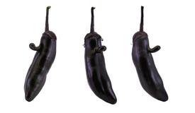 Framsida på aubergineet Royaltyfria Bilder
