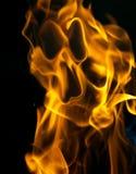Framsida på brand på en svart bakgrund arkivbilder