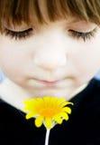 framsidabrudtärna henne holding till yellow Fotografering för Bildbyråer
