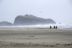 Framsidan vaggar stranden Bandon Oregon arkivfoton