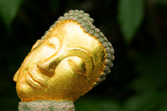 Framsidor av Buddhabilden tar i slut upp Fotografering för Bildbyråer
