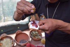 Framställning av färger från naturen i Cuzco, Peru Arkivbild