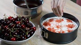 Framställning av läcker och söt ostkaka med körsbärsröd gelé arkivfilmer