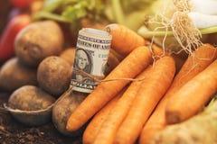Framställning av vinst från organiskt lantbruk royaltyfri foto