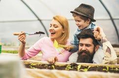 framtida livstid den lyckliga familjen ger framtida liv för växt begrepp för framtida liv framtida liv med familjarbete i växthus royaltyfri foto