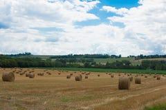 França, lote e Garona, Nérac, campo, após a colheita Fotografia de Stock Royalty Free