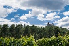França, lote e Garona, repes do sur de Buzet, castelo, vinhedo Fotografia de Stock