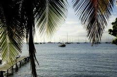 França, Martinica, vila de Sainte Anne Imagens de Stock Royalty Free