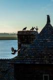 França. Normandy. Mont Saint-Michel. Telhados Imagens de Stock