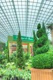Français Faire, jardins par la baie, Singapour Images libres de droits