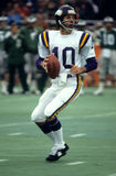 Fran Tarkenton Stock Photography