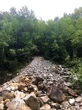 Frana di roccia su Forest Hill ripido Immagine Stock Libera da Diritti