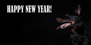 ` Francés de la Feliz Año Nuevo del ` de la cabeza y de la inscripción de perro en fondo negro Fotografía de archivo libre de regalías