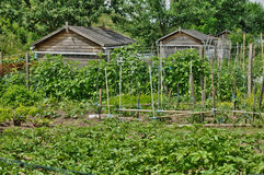 France, allotment garden in Les Mureaux Royalty Free Stock Image