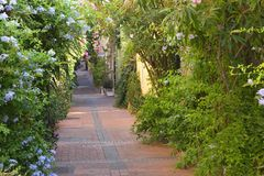 France, Antibes - August 28: Narrow street view in the ancient t Royalty Free Stock Image