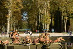 France, Apollo fountain in the Versailles Palace park Royalty Free Stock Images