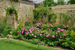 Free France, Canon Castle Garden In Normandie Stock Photo - 36736590