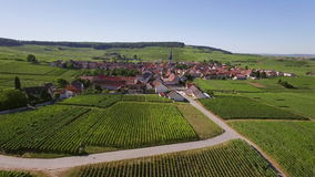 France, Champagne, regional park of Montagne de Reims, Aerial view of Chamery stock video