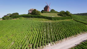 France, Champagne, regional park of Montagne de Reims, Aerial view of windmill of Verzenay, stock footage