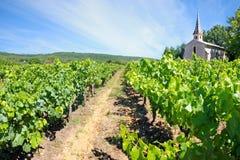 France - Chartreuse de Valbonne Royalty Free Stock Images