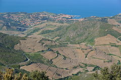 France Collioure village and fields landscape. France Pyrenees-Orientales Collioure village and vineyards fields landscape, Mediterranean, seen from the heights Stock Photography