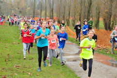 France,  cross country of les mureaux in winter Royalty Free Stock Photography