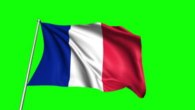 France flag stock video
