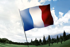 France flag on the hill Stock Photography