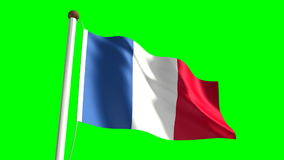 France flag stock footage