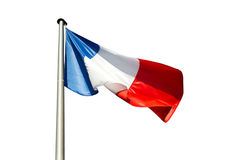 France flag on  white background Stock Photos