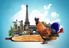 France. French colored rooster with big tai stock photography