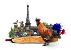 France. French colored rooster with big tai royalty free stock image