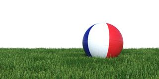 France French flag soccer ball lying in grass world cup 2018. Isolated on white background. 3D Rendering, Illustration Royalty Free Stock Photos