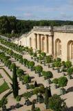 France, garden of the Versailles palace Orangery Stock Photo