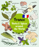 France herbs and spices. stock illustration
