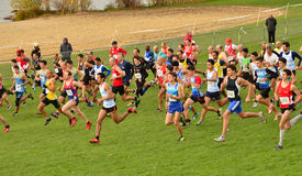 France, international cross country of les mureaux on leisure i Royalty Free Stock Photo