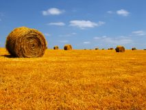France landscape. Hay field in france Royalty Free Stock Image