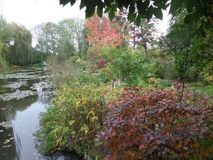 France, Loire Valley, Giverny, Claude Monet`s garden, a pond, Royalty Free Stock Images