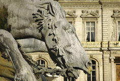 France; Lyon or Lyons: horse statue Royalty Free Stock Images
