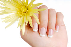 France manicure Royalty Free Stock Photo