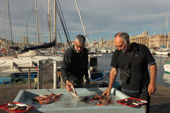 France, Marseille -November 19, 2015.:Selling fish at the fish m Royalty Free Stock Images