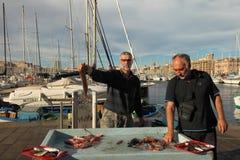 France, Marseille -November 19, 2015.:Selling fish at the fish m Stock Image