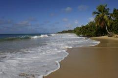France, Martinique, Sainte Anne Stock Images
