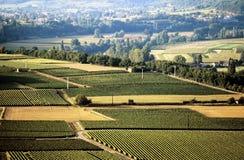France midi pyrenees river lot. Europe france midi pyrenees vineyards valley of the river lot Stock Photos