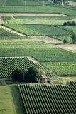 France midi pyrenees river lot. Europe france midi pyrenees vineyards valley of the river lot Royalty Free Stock Image