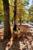 france paris Augusti 30th 2016 En kvinna som kopplar av med hennes dator i en offentlig trädgård i Paris Arkivfoto