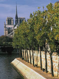 France. paris. cathedrale notre-dame from ile st. louis. stock images