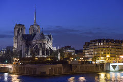 France, Paris, Illuminated Notre Dame de Paris seen from Seine a Stock Images