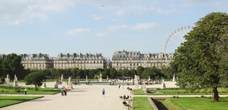 France, Paris - June 17, 2011: Jardin de Tuileries Stock Photos