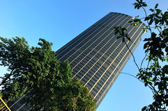 France, Paris; the montparnasse tower Stock Photography